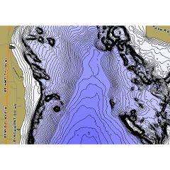 LakeMaster BEMIDJI (BELTRAMI C O MN) LPMNBI05-06